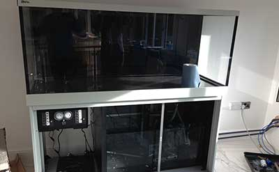 aquarium fish tank installation